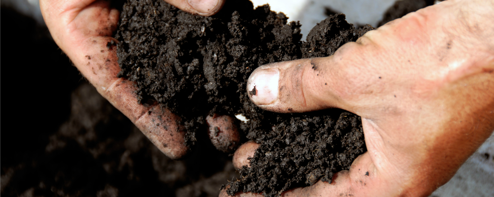 Why Use Zone Sampling to Improve Overall Soil Health?